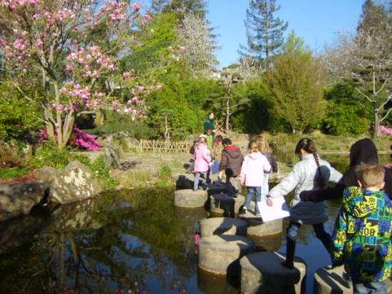 Les cp d couvrent le jardin japonais ecole notre for Le jardin japonais nantes