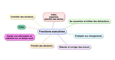 Une vidéo pour comprendre le lien entre les fonctions exécutives et les troubles de l'apprentissage (+ ressources)