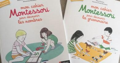 2 cahiers Montessori pour découvrir la grammaire et les nombres