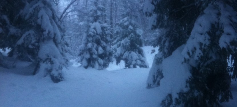 La neige, ça c'est fait…