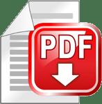 Скачать PDF
