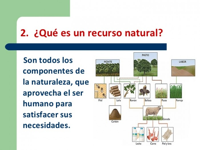 Recursos Naturales Renovables y No Renovables  Ecologa Hoy