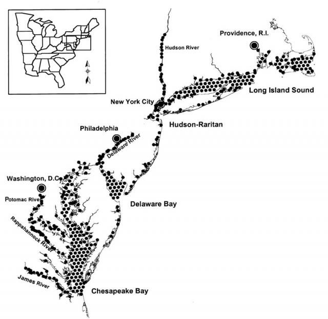 Coastal Ecology of the Virginian Biogegraphic Province