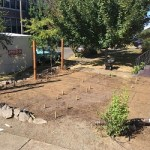 image: some permaculture master plan clients like to install their projects themselves.