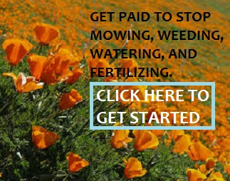 image: get paid to stop mowing, weeding, watering, and fertilizing; get started here.