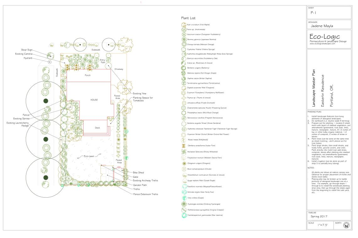 image: portfolio low maintanance privacy permaculture master plan