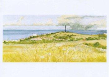 Whitehawk Hill today. As seen from Sheepcote Valley, East Brighton © Jane Hawkins - watercolour & gouache - 2014