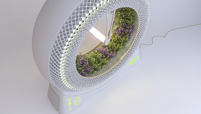 Green Wheel cultivo hidropnico rotatorio de uso casero
