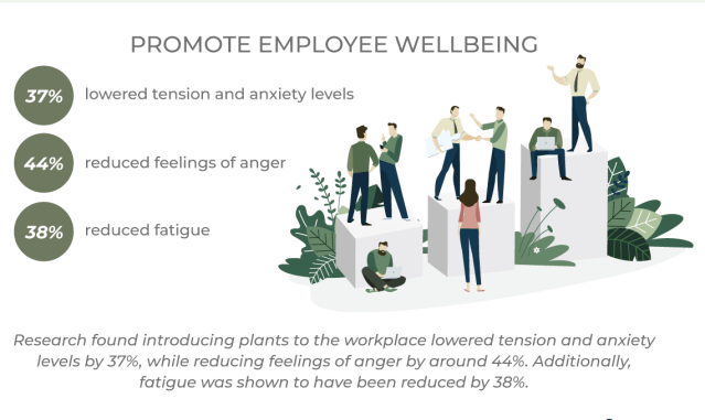 Infographic: Plants in the Workplace