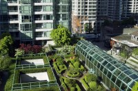 Urban Rooftop Gardening in High Rise Buildings | Institute ...