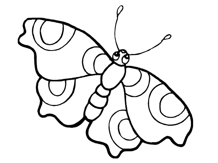 Big Eyed Butterfly Colouring Page for Kids Printable
