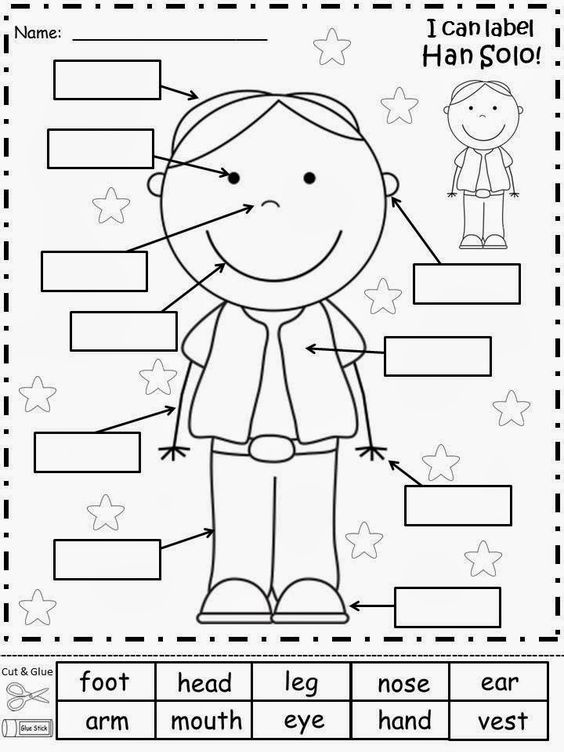 Kids learning cutout coloring worksheet of body parts