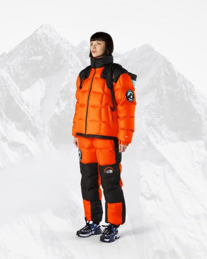 the north face expedition system 7