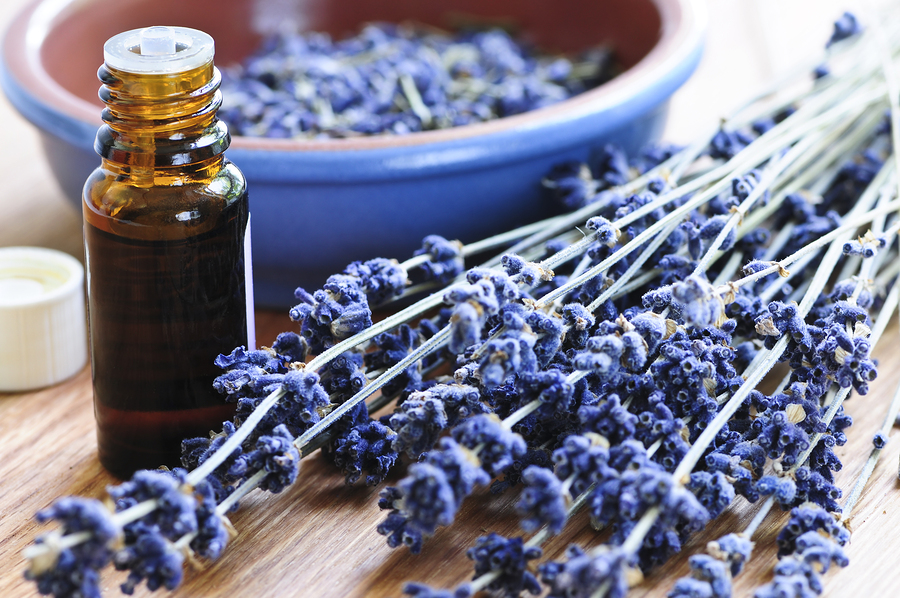 10 Most Expensive Essential Oils