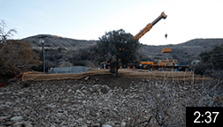 December 12, 2015 - Bridge over Arroyo Sequit Creek A 90 ft. X 16 ft. bridge was installed by Oak Tree Construction over Arroyo Sequit Creek in Leo Carillo State Park. The bridge replaces a stream crossing that prevented southern steelhead trout from reaching their spawning habitat upstream. Watch the 2 minute 37 second time-lapse video of the bridge installation. NOTE: Click on image to see video.