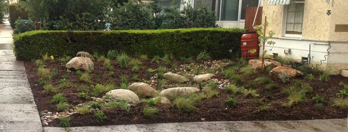 optimized-rain-garden1400x530