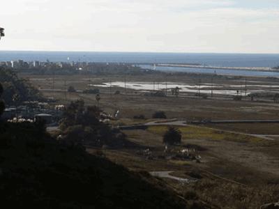 ballona-wetland