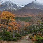 """Diego Moreno: """"Este año fue récord en creación de Parques Nacionales"""""""