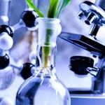 """Gerardo Marchesini: """"La biotecnología puede ser aplicada en todas las industrias"""""""