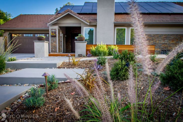 Backgrounds san diego landscape designers of maintenance iphone high resolution drought tolerant landscaping ideas from