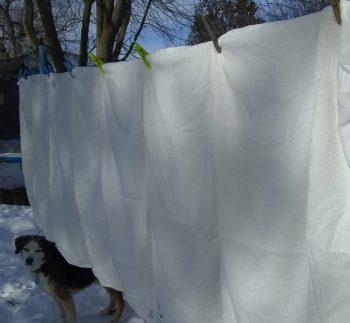 white bamboo towels hanging on clothesline on sunny winter day in Canada, while dog watches