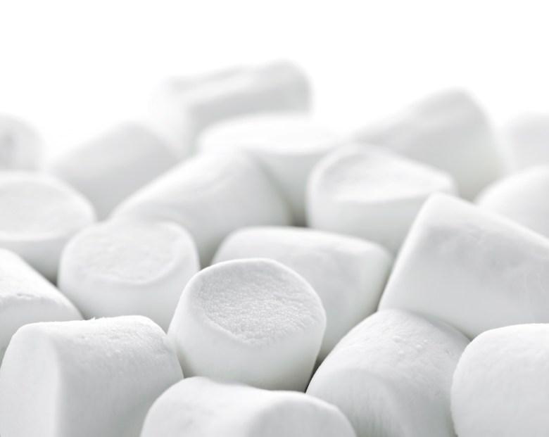 rethinking the Marshmallow Test