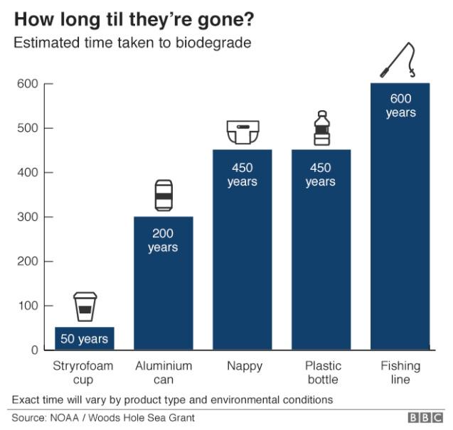 plastic-free sustainability