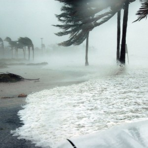 Weekly economic news roundup and natural disasters
