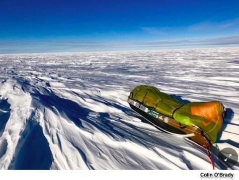 Antarctic economics