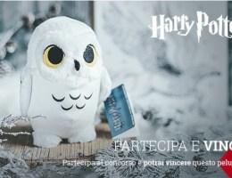 vinci il peluche di edvige di harry potter