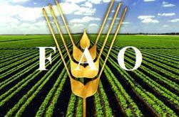 La FAO y Argentina organizan foro de agricultura y alimentación en Latinoamérica