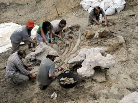 paleontologos1