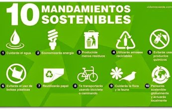 eco-10-mandamientos