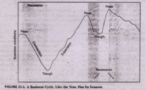 FEATURES OF THE BUSINESS CYCLE Economics Assignment Help