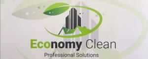 Economy Solutions Head Logo