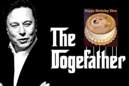 Elon Musk Stans Wish Their 'Dogefather' a Happy Birthday With Memes as Tesla CEO Turns 50