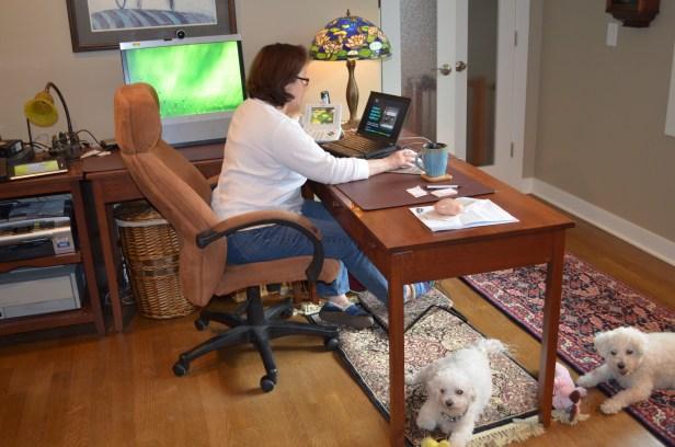 La plupart des employés qui demandent à travailler à domicile sont des parents et des jeunes qui ont besoin d'horaires et d'heures de travail flexibles