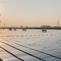 Plus de diplômes d'éco-énergieL'effet Greta sur le marché de l'électricité
