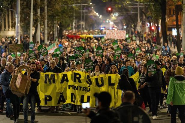 marsul_pt_paduri_by_catalin_georgescu_greenpeace_romania_fb
