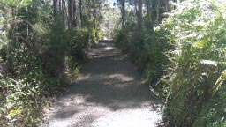 Thomson-Station-Rail-Trail-2