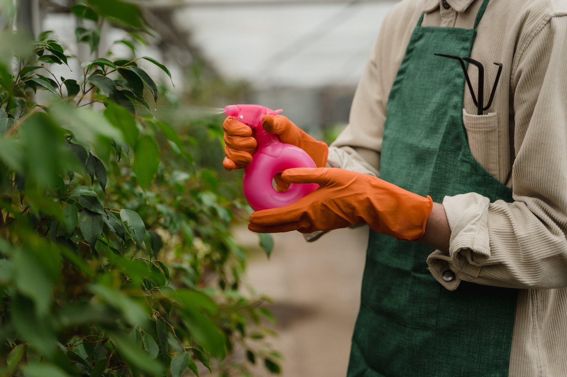Best gardening gloves 2021