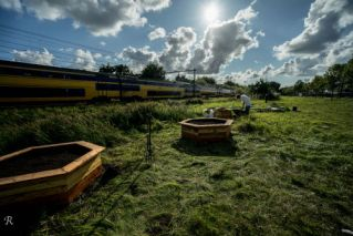 Treinland. Voorbijrijdende trein op de achtergrond met een paar zeshoekige bakken op de voorgrond