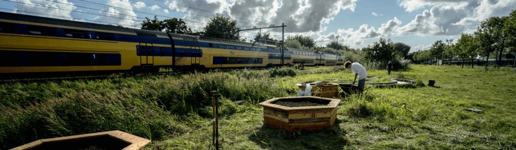Ecoring treinland, prachtige foto met een voorbij rijdende trein. Met op de voorgrond drie zeshoekige bakken en een vrijwilliger
