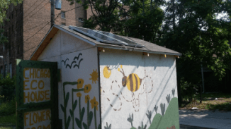Eco House bee keeping grant