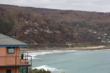A beach facing slope with homes damaged by bushfire