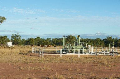 Gas well equipment in a farm setting with cattle in the background