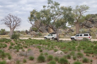 two 4WD crossing bush
