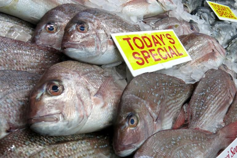 fish on market stall