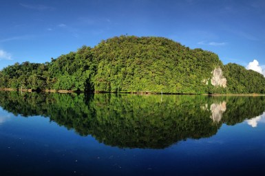 island covered in trees reflected in deep blue water