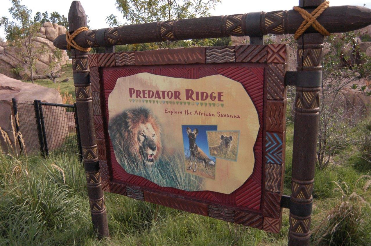 environmental-Predator-Ridge1